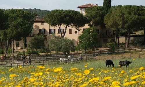 Agriturismo Corte degli Ulivi - Roselle Terme (Grosseto)